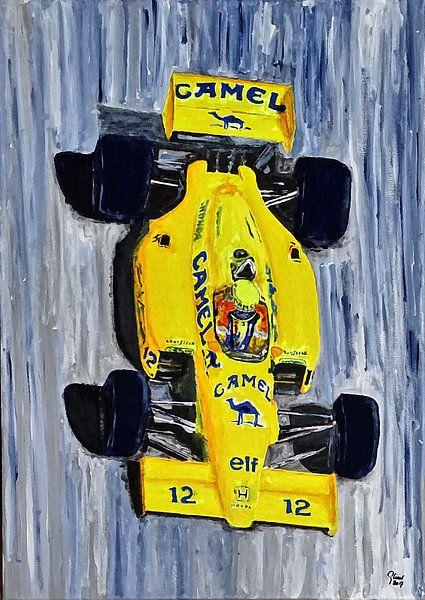 Ayrton Senna - The Lotus Years van Jean-Louis Glineur alias DeVerviers