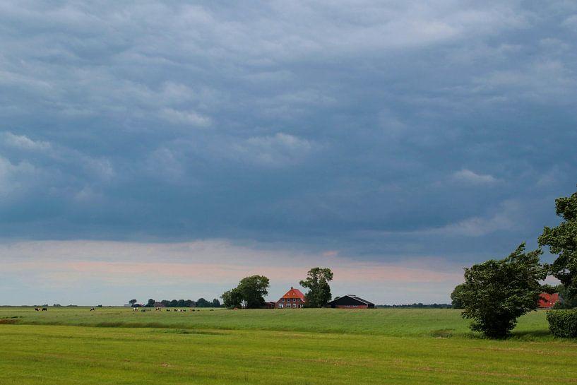 Hollandse luchten Friesland van Inge Hogenbijl