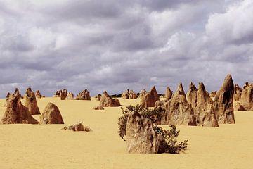 Pinnacles Wüste von Inge Hogenbijl