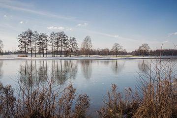 Paalse Plas Frozen van Kristof Mentens