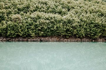 Ein ruhiges Naturporträt in Europa von Milene van Arendonk