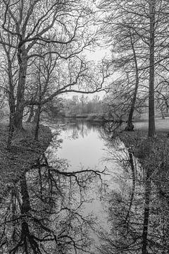 Vondelpark von Jeroen de Jongh