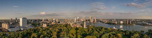 Panorama von Rotterdam von Toon van den Einde