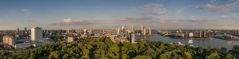 Panorama van Rotterdam van Toon van den Einde