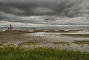 Groene Strand Terschelling von Waterpieper Fotografie