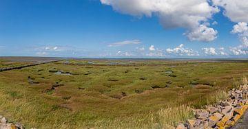 Panorama van het Nationaal Park Waddenzee met een waarschuwing van Alexander Wolff