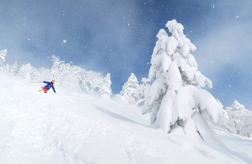 Ski de poudreuse au Japon sur Menno Boermans