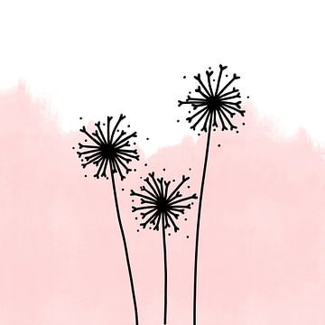 Pusteblumen rosa von Sophia Amend