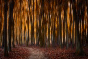 Autumn Fairy Tale van Bart Hendrix