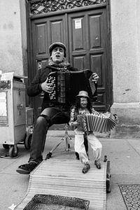 Straatmuzikant in Segovia van Merel Taalman