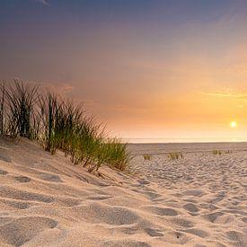 Sand von Jan Koppelaar