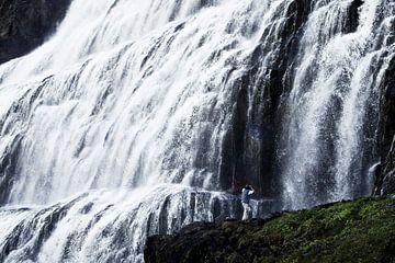 Fjallfoss, Iceland von Martijn Smeets