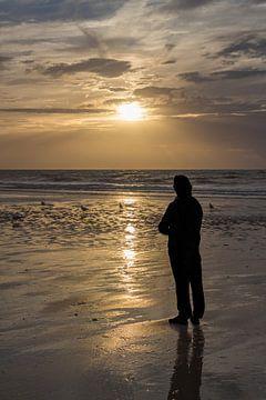 Silhouette bei Sonnenuntergang von didier de borle