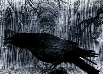 Zwarte raaf in een kerk 2 van Nicky`s Prints