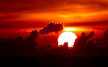 Sunset Salsa von Loraine van der Sande
