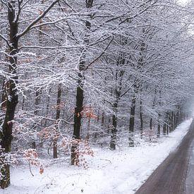 Winter in die Lage Vuursche von Pascal Raymond Dorland