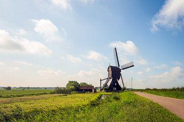 Scheiwijk Mühle in einer niederländischen Landschaft von Ruud Morijn