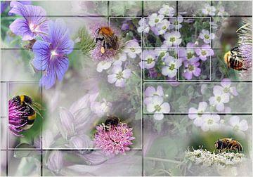 Bijen en hommels von Anneke van de Roest-Nijman