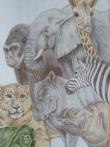 the zoo van Edith Boogaard van den
