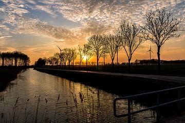 Ondergaande zon nabij Duiven van Devlin Jacobs