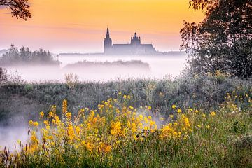 Een vroege lente ochtend