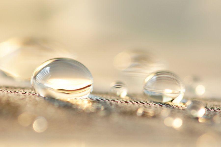Bubble fun van Carla Mesken-Dijkhoff