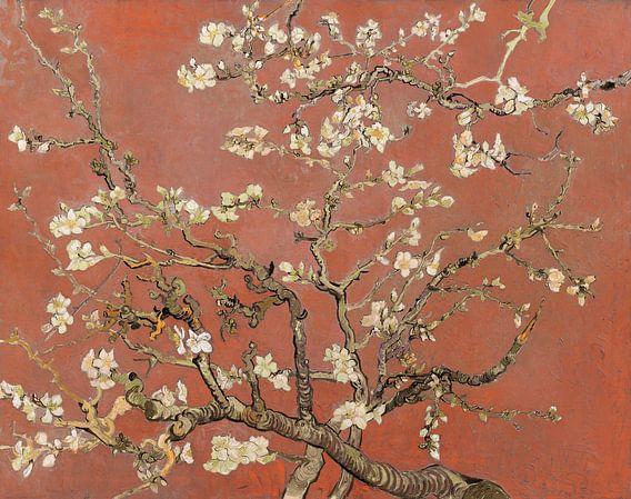 Mandelblüte von Vincent van Gogh (Koralle, Farbe des Jahres 2019)