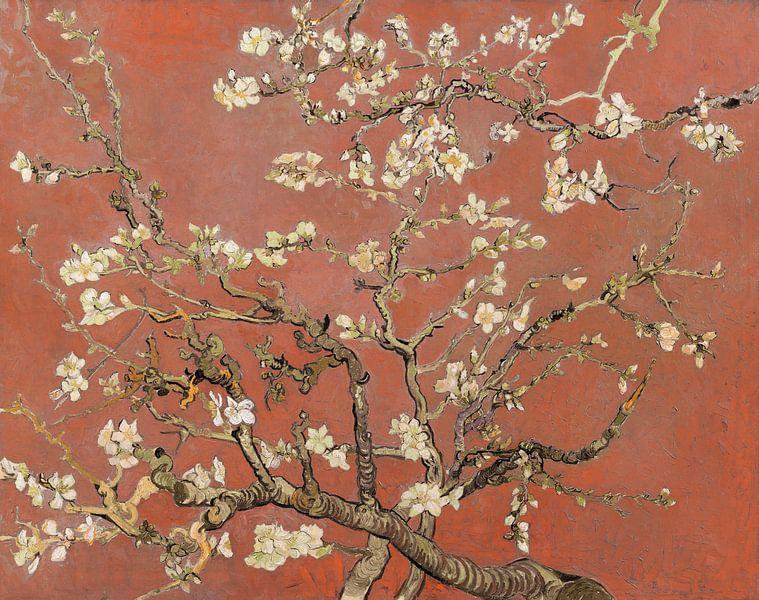 Mandelblüte von Vincent van Gogh (Koralle, Farbe des Jahres 2019) von Meesterlijcke Meesters