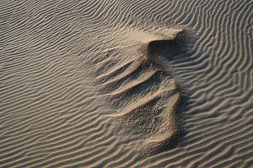 Patronen in het zand van Rik Verslype