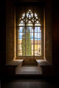 Uitzicht uit middeleeuwse ramen van het klooster van Poblet in Spanje van Wout Kok