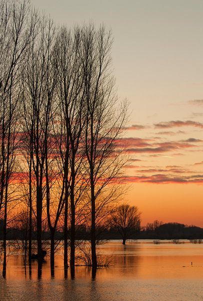 Sunset van Babs Boelens