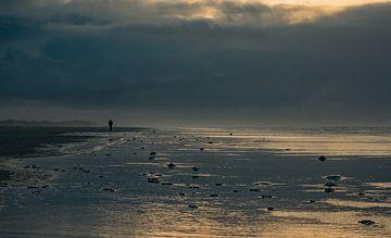 Sturm am Strand von Terschelling von Natascha Worseling
