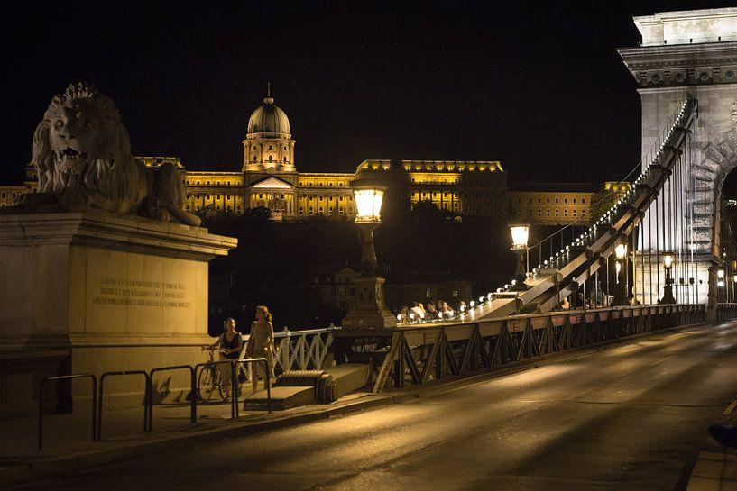 Boedapest kasteel van Erwin Zwaan