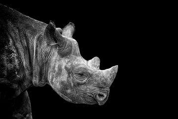 Nashorn in schwarz-weiß von Tilly Meijer