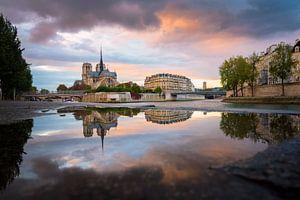 Reflections of the Notre Dame de Paris