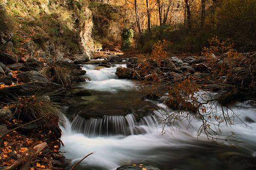 The Autumn River