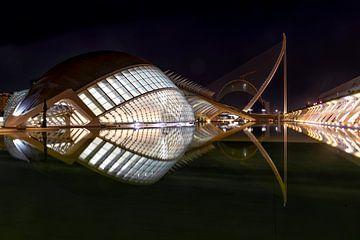 Museu de les Ciències Príncipe Felipe, Valencia von Tilly Meijer