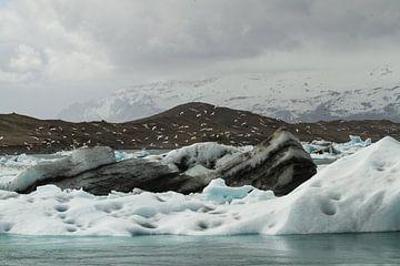 Glacier Lagoon sur Leanne lovink