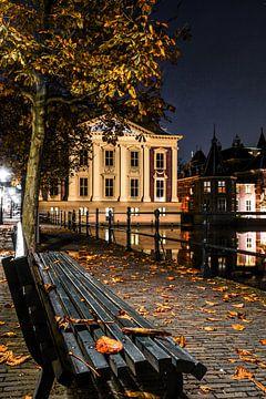 Den Haag op zijn mooist! van Dirk van Egmond