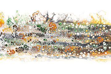 Fluss im Herbst. von Ilse Smit