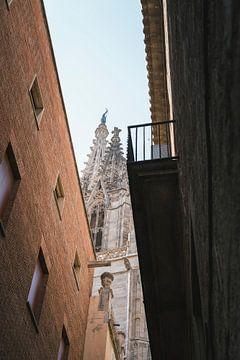 Cathedraal van Barcelona van Jarrik Bijsterbosch