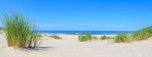 Strand in de zomer aan de Noordzee