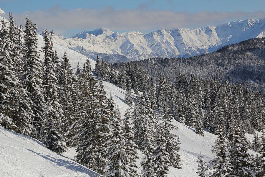 Ski gebied van Jeroen Meeuwsen