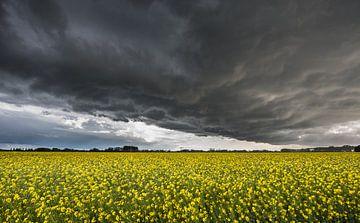 storm over de polder van Jan Heijmans