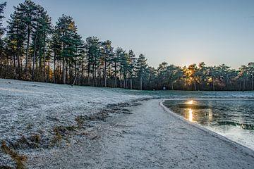 Winterlandschap 'Het Zand' Alphen,Nederland van Michel Van Giersbergen