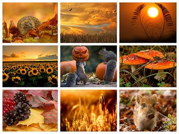 herfst collage van Marja Hoebe