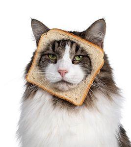 Pure Bread van Nynke van Holten