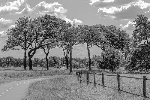 Norgerweg Langelo Drenthe in zwart-wit