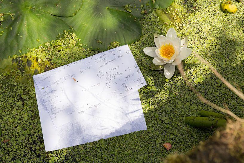 Hoge wiskunde in een gracht in Delft van Marijke van Eijkeren