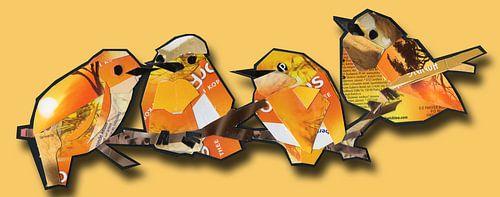 Orange quartet von Ruud van Koningsbrugge